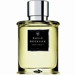 DAVID BECKHAM INSTINCT WODA T 50ml